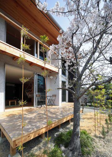桜見の家_186