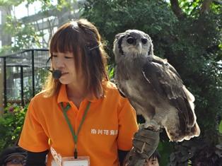 掛川花鳥園バードショー
