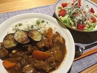 岐阜のカレーライスとサラダ